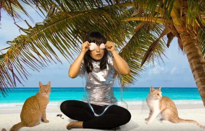 Jolly Goods performen mit Katzen vor dem Green Screen